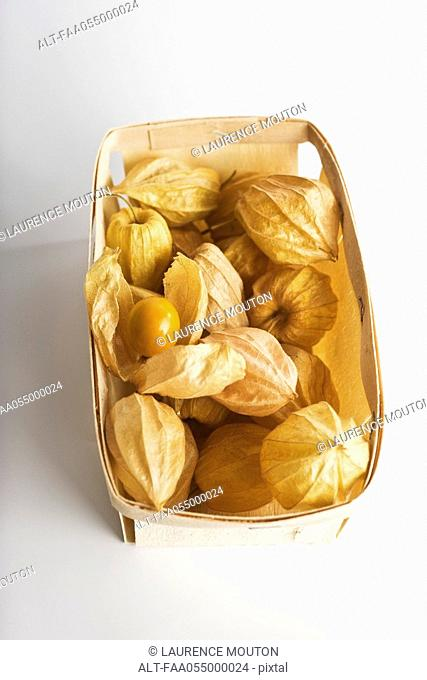 Cape gooseberry Physalis peruviana