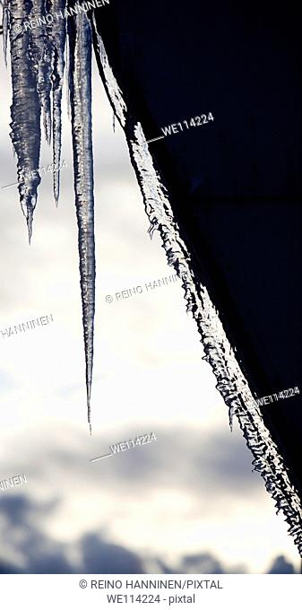 Icicles. Location Oulu Finland Scandinavia Europe