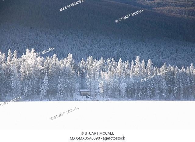 Canada, BC, Loon Lake. Snow covered lake , trees and cottage in the woods