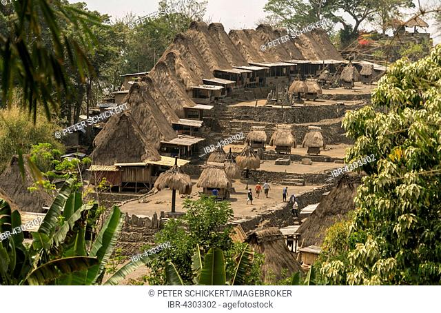 Village square, shrines and traditional thatched wooden houses, Ngada village Bena, Bajawa, Flores Island, Indonesia