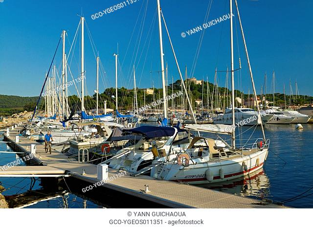 Porquerolles Island, Var, Provence, France