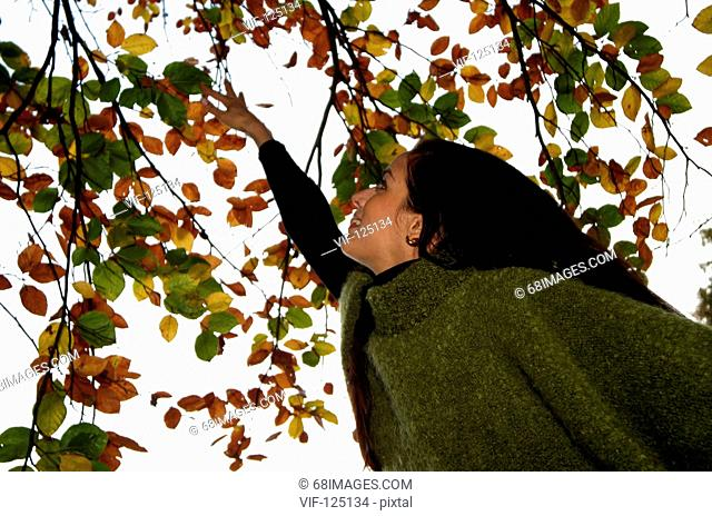 Herbst & Spas - Junge dynamische Frau tobt in bunten Blaettern - Hamburg, GERMANY, 01/01/2005