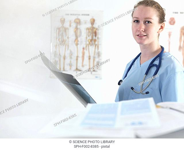 Doctor studying an X-ray