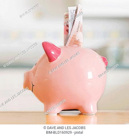 Folded money in piggy bank
