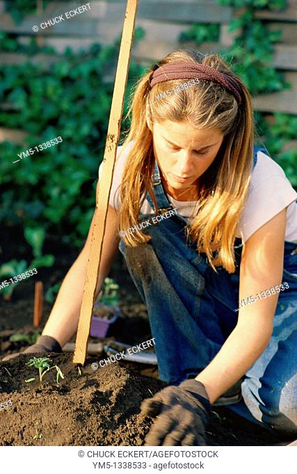 Young woman planting tomato's in garden