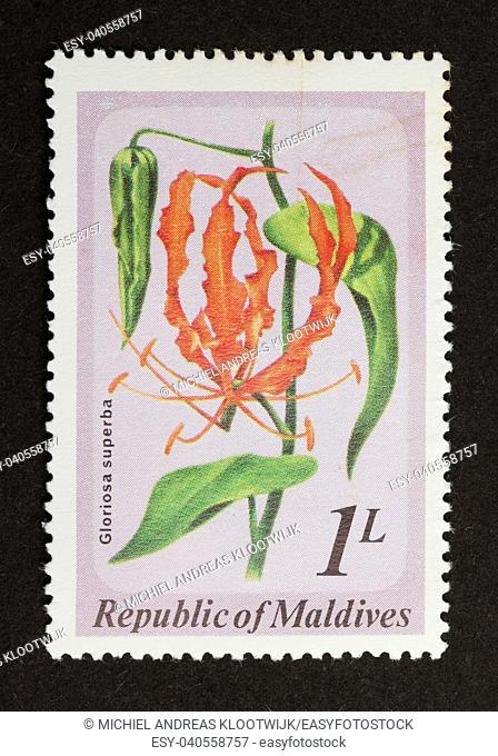 MALDIVES - CIRCA 1980: Stamp printed in the Maldives shows a plant with a flower (Gloriosa superba), circa 1980