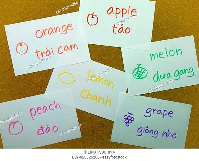 Language Flash Cards Vietnamese