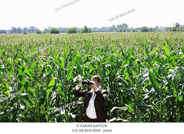 Businesswoman with binoculars in corn field