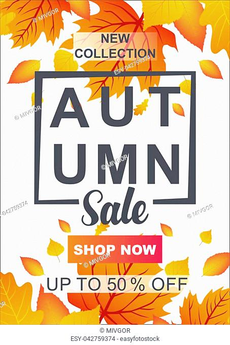 Autumn sale vector banner template with frame and sale text in fall season leaves background for seasonal discount promotion template