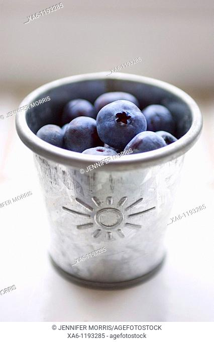 A small galvanised metal tin holds freshly picked blueberries