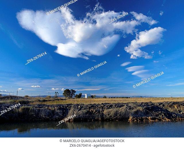 Winter afternoon at Encanyissada Lagoon. Ebro River Delta Natural Park, Tarragona province, Catalonia, Spain