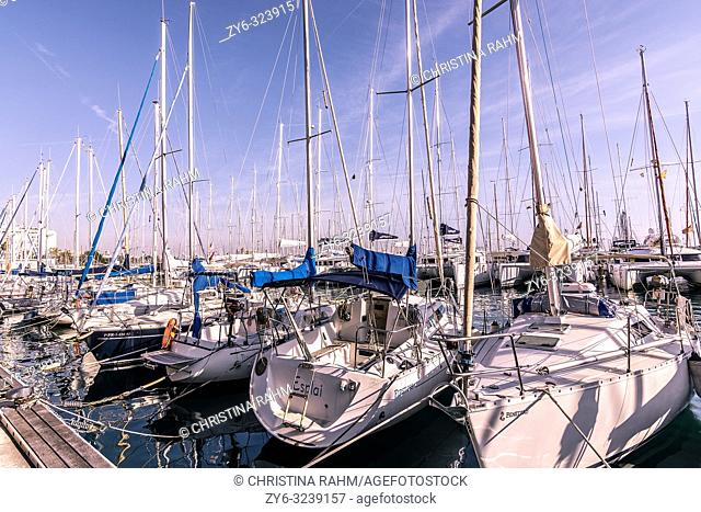 PALMA DE MALLORCA, SPAIN - FEBRUARY 9, 2019: Moored boats along the Paseo Maritimo on a sunny winter day on February 9, 2019 in Palma de Mallorca, Spain
