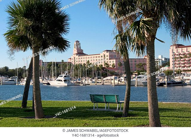 Palm trees in the park on the waterfront framing buildings in downtown, St  Petersburg, Florida