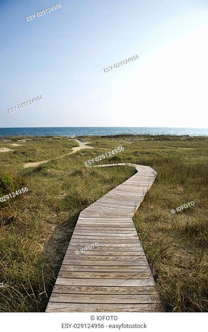 Wooden pathway to beach on Bald Head Island, North Carolina