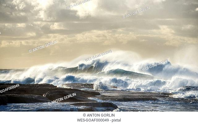 Australia, New South Wales, Sydney, Tasman Sea, waves, surf