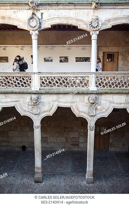 Claustro de la Casa de las Conchas, Salamanca