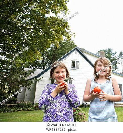 Two children, girls standing in a garden holding and eating fresh picked tomatoes