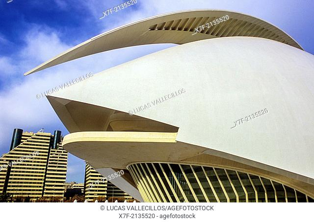 Detail of Palacio de las Artes Reina Sofía,City of Arts and Sciences by S. Calatrava. Valencia. Spain