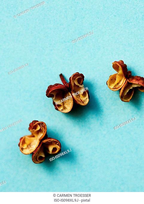 Szechuan peppercorns