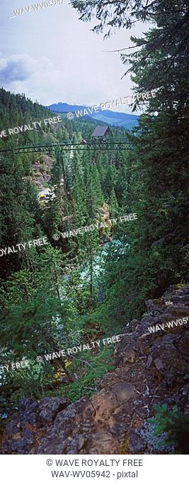 Bungee Jumping, Whistler, BC, Canada