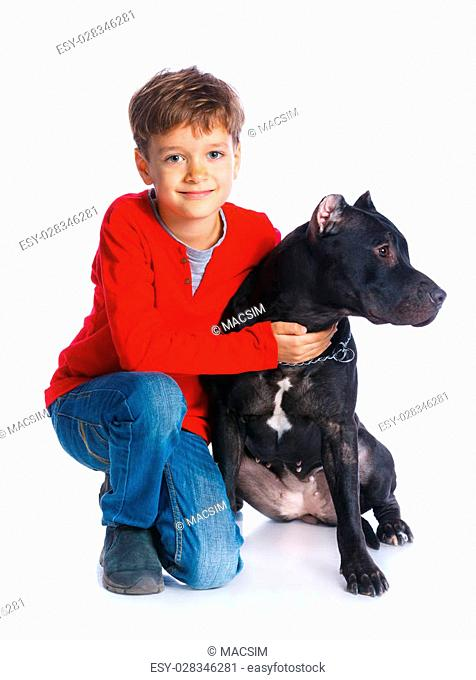 f4dede45eff1 Cute boy sitting with his Pit Bull Terrier smiling at camera on isolated  white background