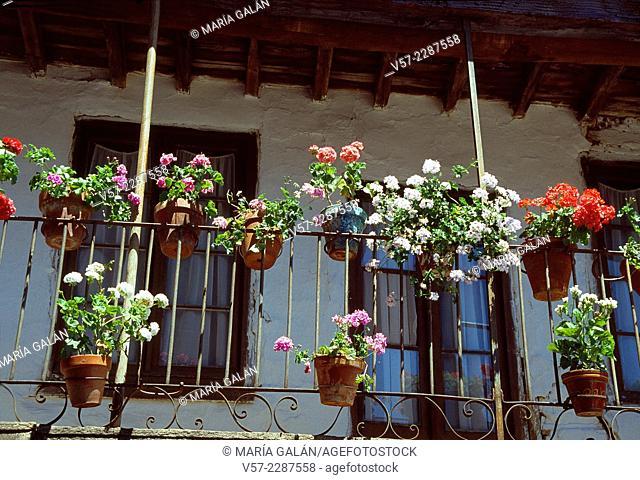 Flower pots in a balcony. La Alberca, Salamanca province, Castilla Leon, Spain