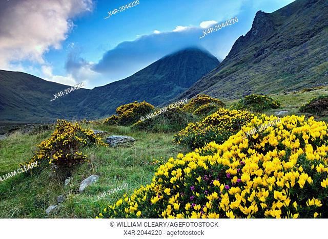 Ireland's highest mountain, Corran Thuthail, capped by cloud, with the Hags tooth to the right, Magillycuddy Reeks, County Kerry, Ireland