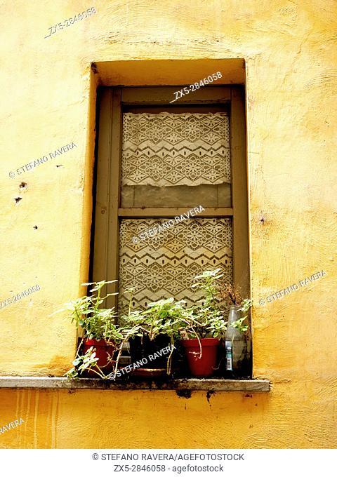 Wiondow - Bolsena, Italy