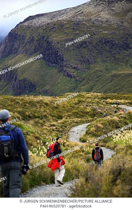 The legendary Tongariro track (Tongariro Alpine Crossing) in the Tongariro National Park demands a lot of power. For many New Zealand travelers the route on the...