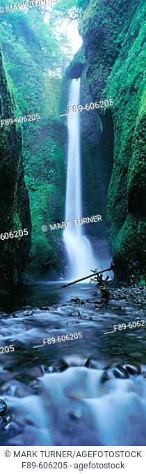 Oneonta Falls. Columbia River Gorge National Scenic Area. Oregon. USA