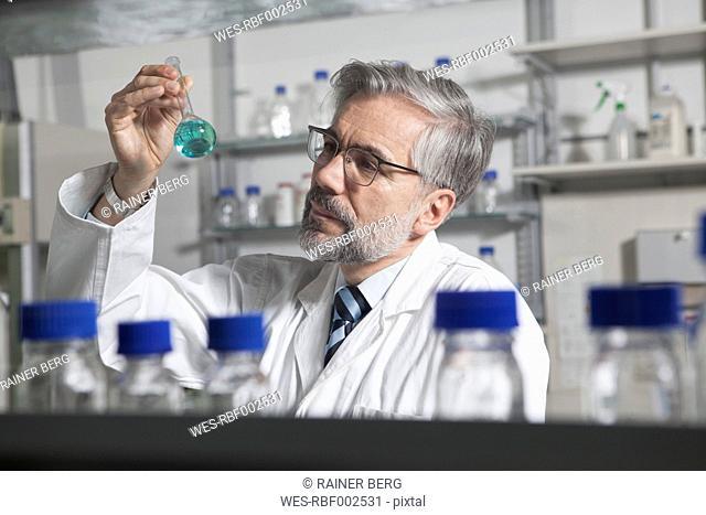 Scientist in laboratory examining liquid in round bottom flask