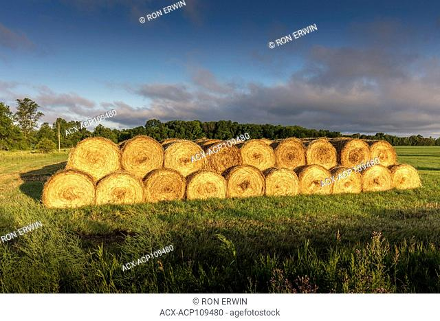 Stacked round hay bales on Barrie Island, Manitoulin Island, Ontario, Canada