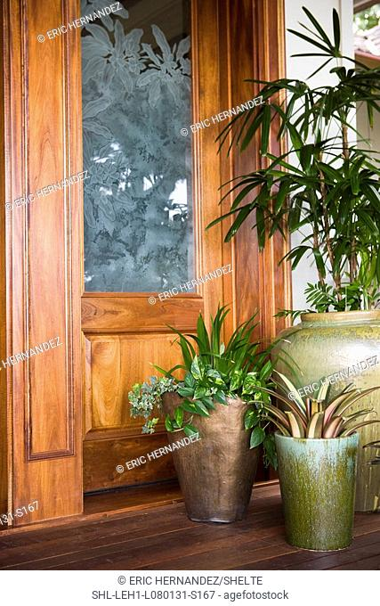 Potted plants on porch to home