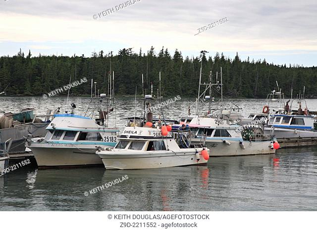 Commercial fishing boats, seiners, and gillnetters, tied up at wharf, Port Edward, Prince Rupert, British Columbia