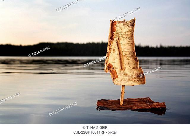 Bark boat on a lake at sunset