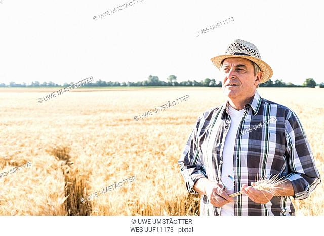 Portrait of pensive senior farmer in a field