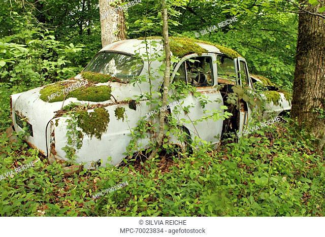 Old Simca Aronde car wreck in forest, Saint-Jory-las-Bloux, Dordogne, France