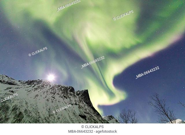 Northern lights and stars on the snowy peaks in the polar arctic night Bergsbotn Senja Tromsø Norway Europe