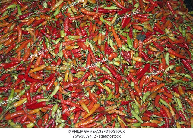 Fresh chilli peppers, Kota Kinabalu, Sabah, Malaysia