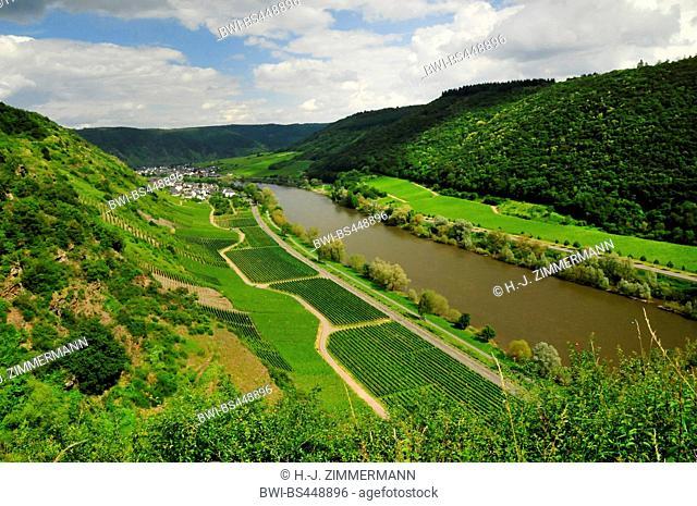 Moselle valley, Germany, Rhineland-Palatinate, Moseltal, Valwig