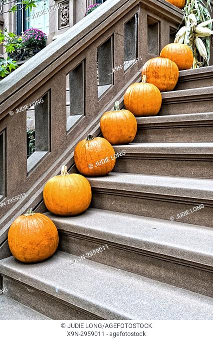 New York City, Manhattan, Upper West Side. Halloween Pumpkins Placed Successively Down the Stairway of a Brownstone Townhouse