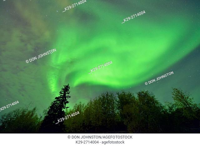 Aurora borealis (northern lights), Yellowknife, Northwest Territories, Canada