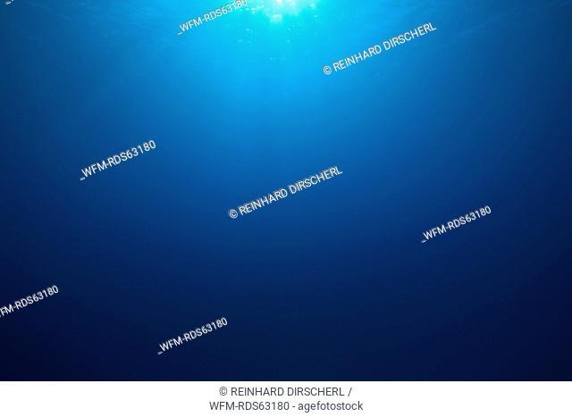Deep Blue Ocean, Thaa Atoll, Maldives