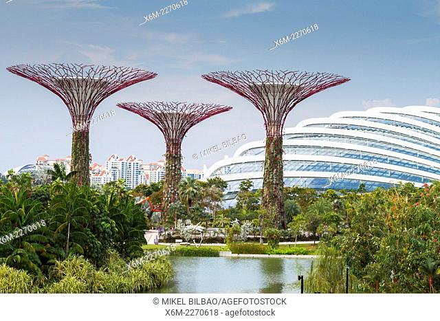 Supertrees and dome. Gardens by the Bay. Singapore, Asia