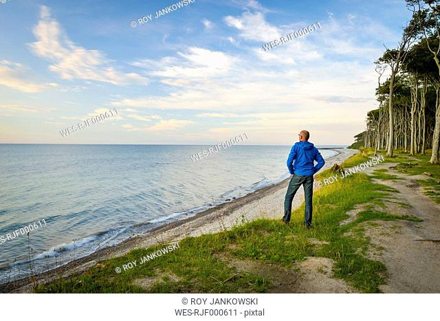 Germany, Nienhagen, Baltic Sea, Gespensterwald, man looking at distance in the morning