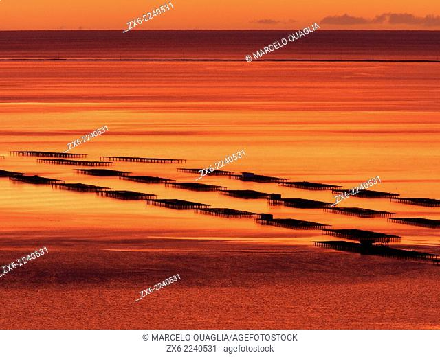 Mussel breeding platforms and Trabucador Isthmo at Alfacs Bay in twilight. Ebro River Delta Natural Park, Tarragona province, Catalonia, Spain