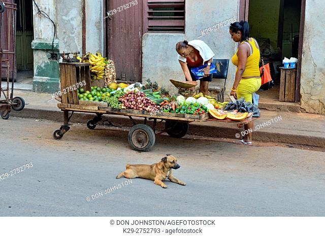 Street commerce in central Havana- Fruit vendor, La Habana (Havana), Habana, Cuba