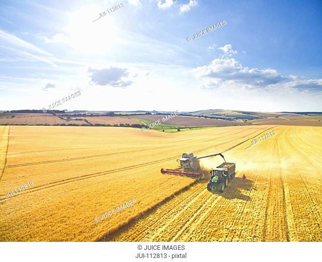 Scenic aerial landscape view of combine harvester filling tractor trailer in sunny golden barley field