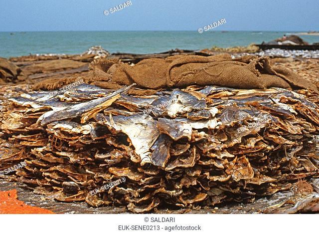 Dried Fish,Senegal