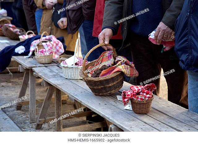 France, Lot, Causse de Limogne, Lalbenque, the truffle market, basket of black truffles